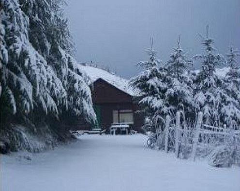 Secret Retreat Log Cabin with Hot Tub