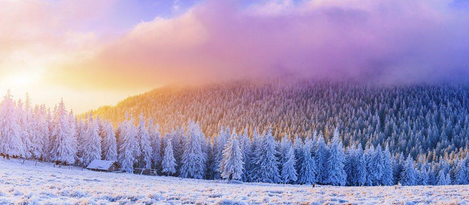 Winter Breaks Scotland